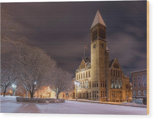 Albany City Hall Wood Print