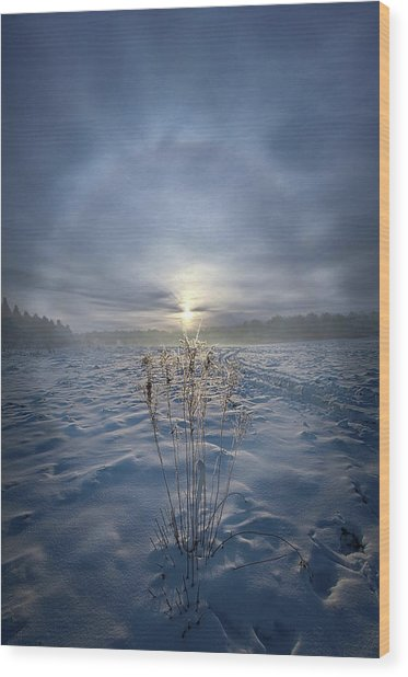 Wood Print featuring the photograph All Is Blue For A Time by Phil Koch