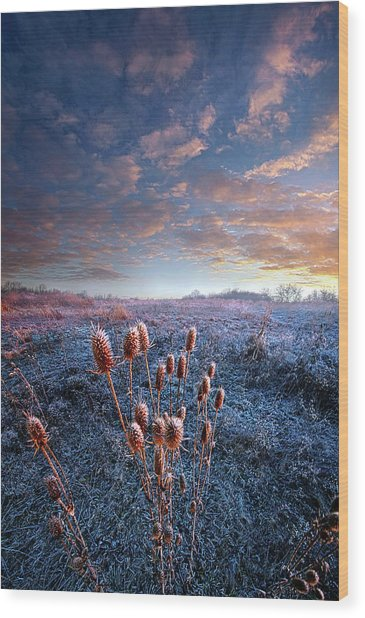 Wood Print featuring the photograph All That You Need Is In Your Soul by Phil Koch