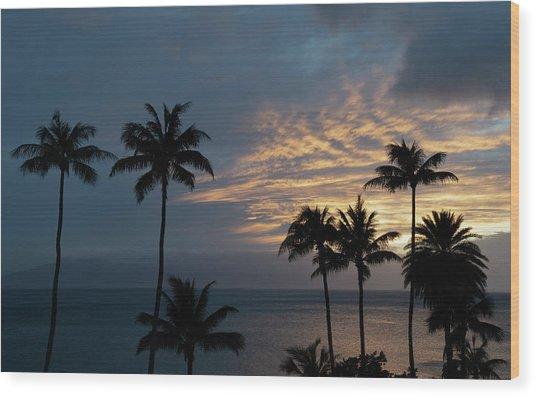 Aloha And Goodbye Wood Print
