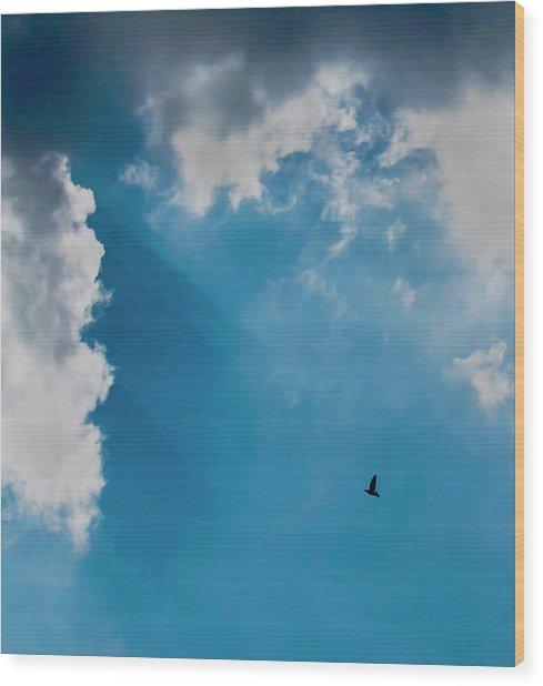 Colours. Blue. Alone. Wood Print