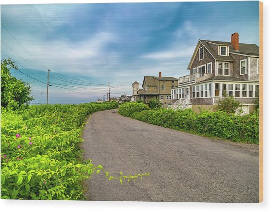Along The Coast Maine Wood Print