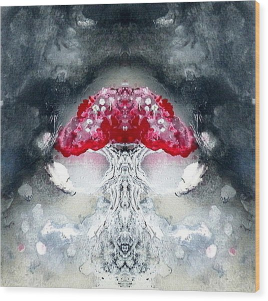 Amanita  Wood Print