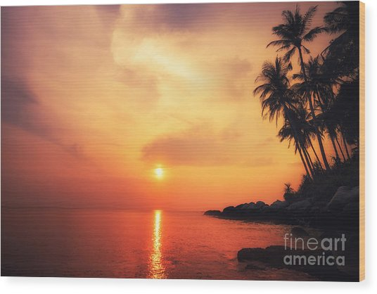 Amazing Colors Of Tropical Sunset Wood Print