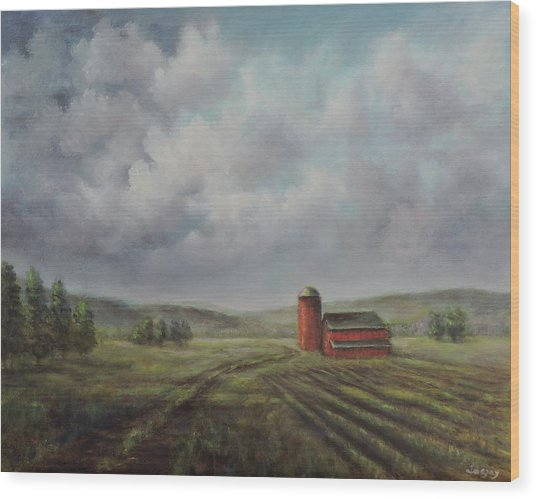 American Scene Red Barn  Wood Print