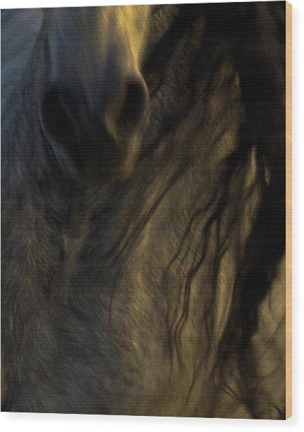 Americano 20 Wood Print