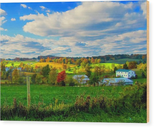 Amish Farm Beauty Wood Print