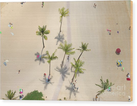 An Aerial View Of People Relaxing On A Wood Print