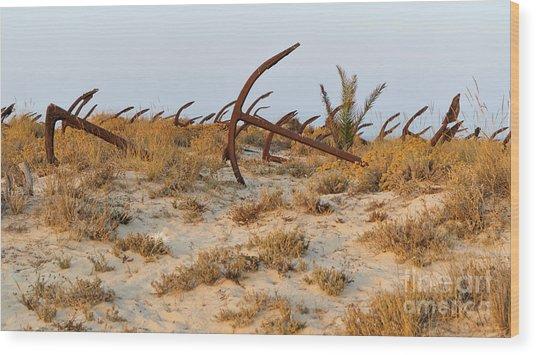 Anchors In Barril Beach Wood Print