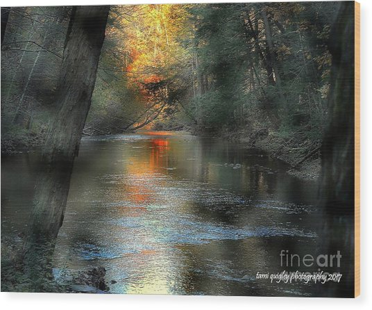 And Autumn Comes  Wood Print