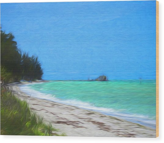 Anna Maria North Shore Wood Print