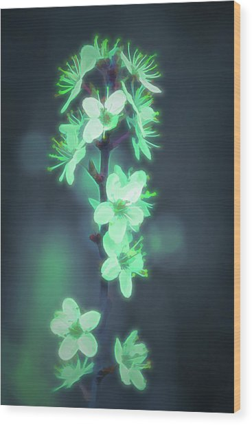 Another World - Glowing Flowers Wood Print