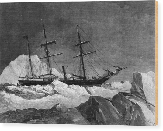 Arctic Exploration Wood Print by Hulton Archive
