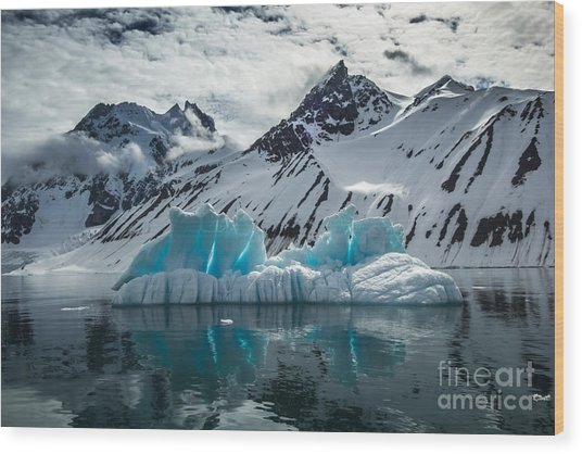 Arctic Spring In South Spitsbergen Wood Print