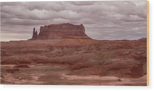 Wood Print featuring the photograph Arizona Red Clay Painted Desert Panoramic View by James BO Insogna