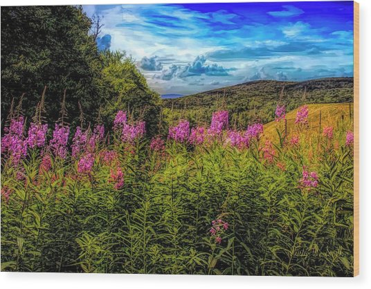 Art Photo Of Vermont Rolling Hills With Pink Flowers In The Fore Wood Print