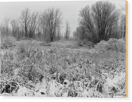 Artistic Snowy Marsh Wood Print