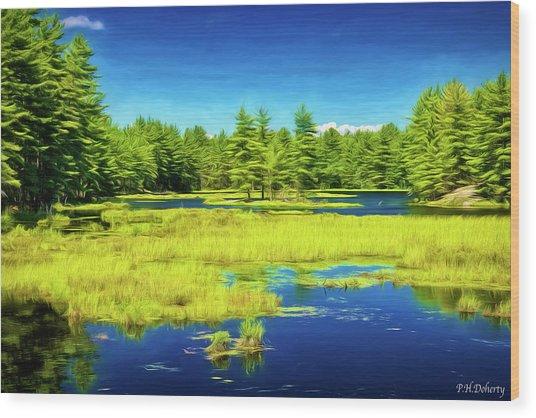 Artistic Summer Lake Wood Print
