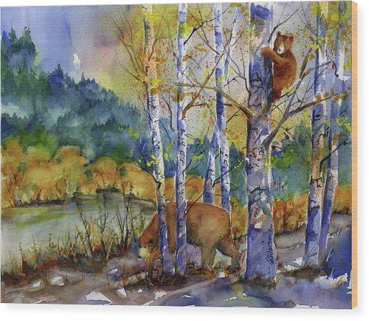 Aspen Bears At Emmigrant Gap Wood Print
