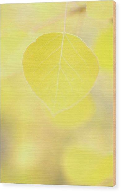 Aspen Leaf Macro Wood Print