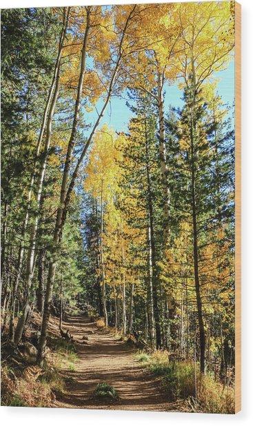 Aspen Trail Wood Print