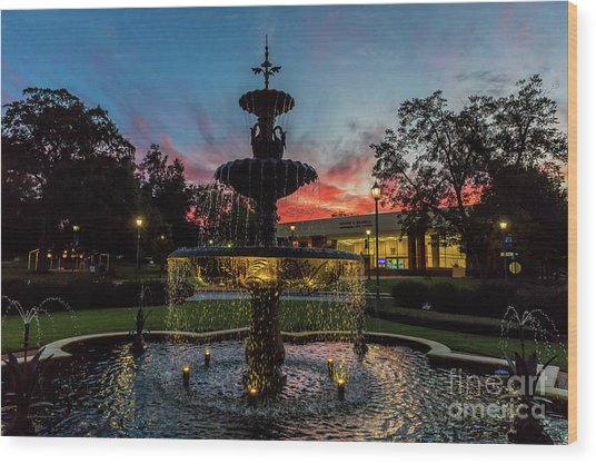 Augusta University Fountain Sunset Ga Wood Print