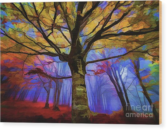 Autumn A18-120 Wood Print