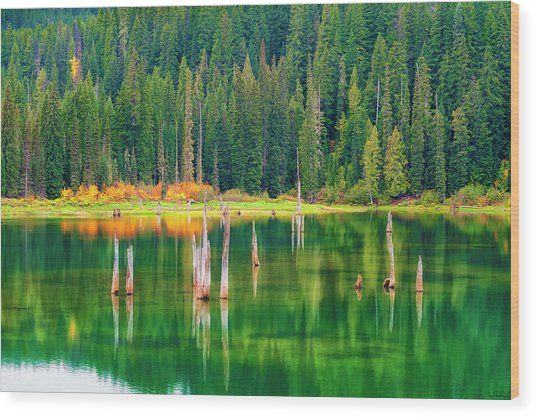 Autumn At Goose Lake Gifford Pinchot National Forest Wood Print