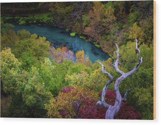 Autumn At Ha Ha Tonka State Park Wood Print