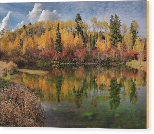 Autumn At Its Best Wood Print by Leland D Howard