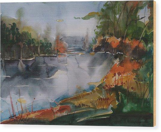 Autumn At The Lake Wood Print by Stefano Popovski