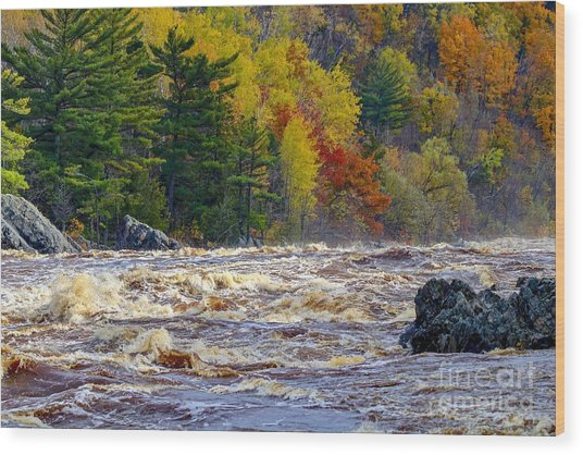 Autumn Colors And Rushing Rapids   Wood Print