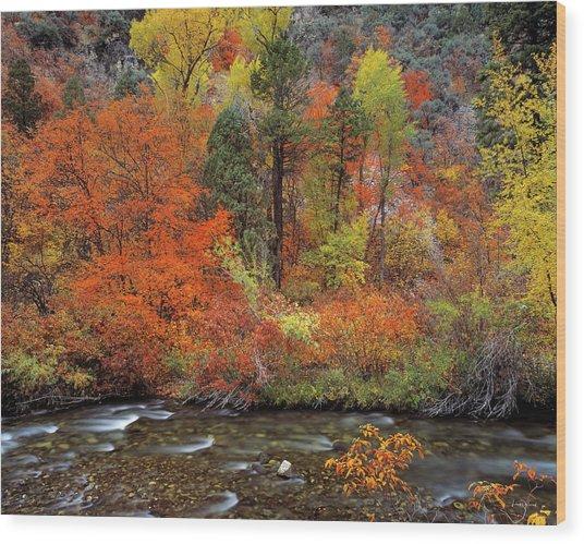 Autumn Creek Wood Print by Leland D Howard