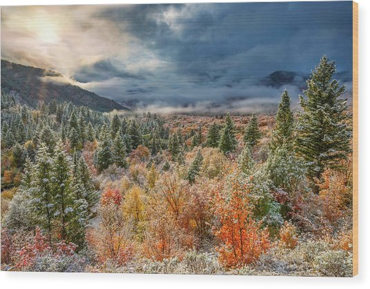 Autumn Grandeur Wood Print by Leland D Howard