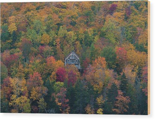 Autumn In Maine Wood Print