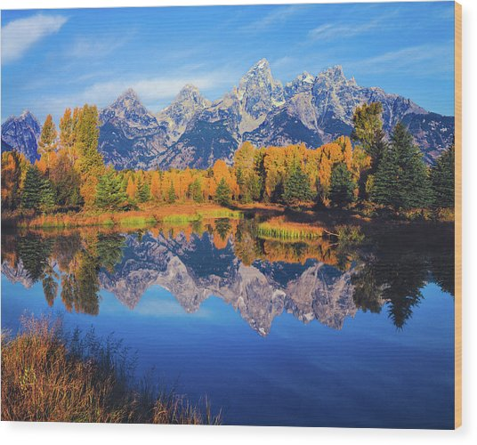 Autumn In The Snake River Valley Grand Wood Print by Ron thomas