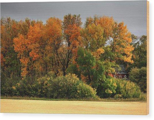 Autumn Is Nigh  Wood Print