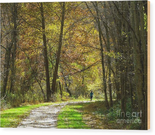 Wood Print featuring the photograph Autumn Jogger by Donald C Morgan