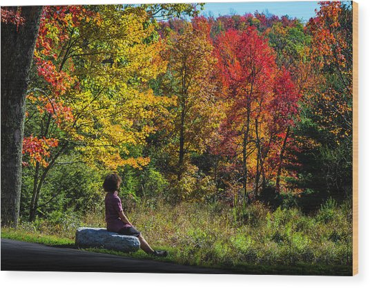 Autumn Leaves In The Catskill Mountains Wood Print