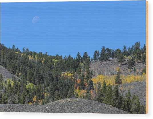 Wood Print featuring the photograph Autumn Moon by James BO Insogna