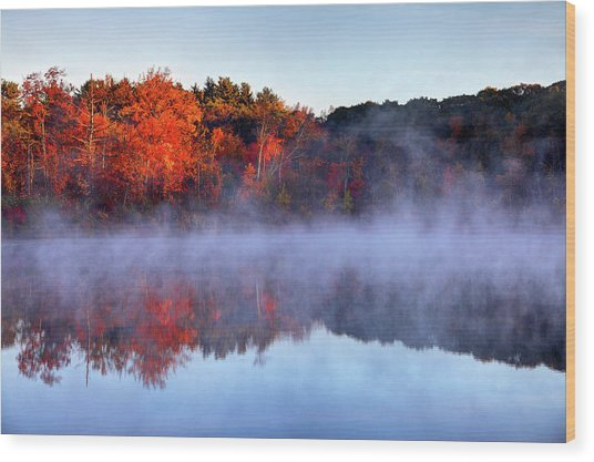 Autumn On Turtle Pond In Bostons West Wood Print by Denistangneyjr