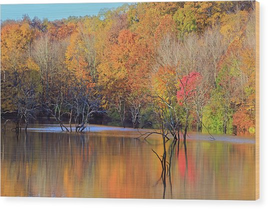 Wood Print featuring the photograph Autumn Reflections by Angela Murdock