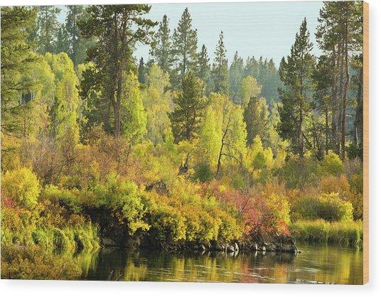 Autumn Scene, Deschutes River Wood Print by Michel Hersen