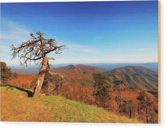 Autumn Scenic Drive Along The Blue Ridge Parkway In North Caroli Wood Print