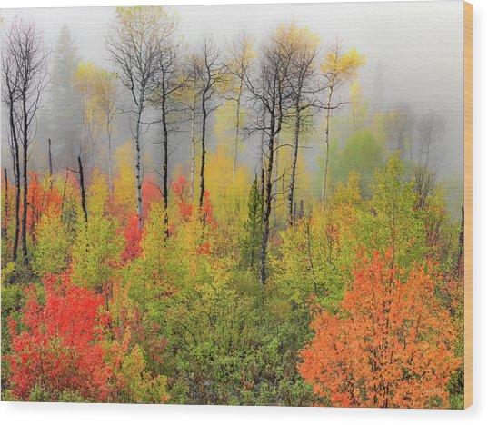 Autumn Shades Wood Print by Leland D Howard