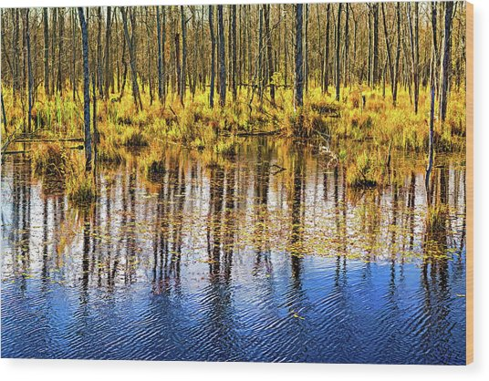 Autumn Slough 4 - Paint Wood Print