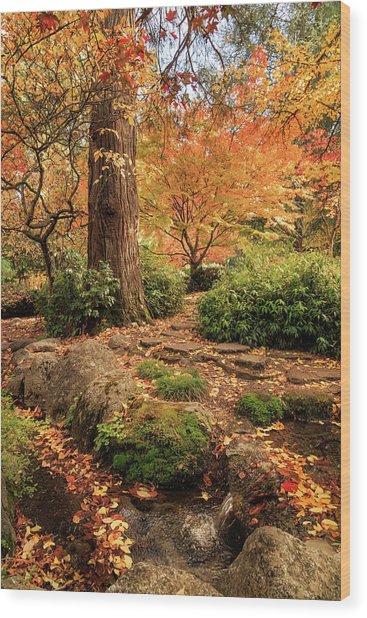 Autumn Stream In Lithia Park Wood Print