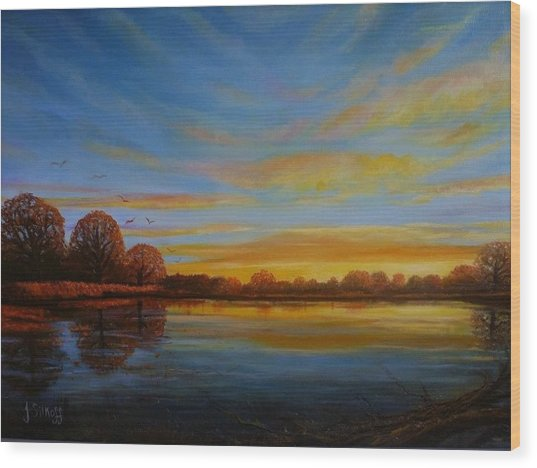 Autumn Sunrise. Wood Print by Janet Silkoff