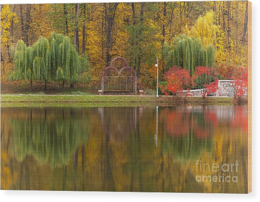 Autumn Tints Of Nature,park In Autumn Wood Print