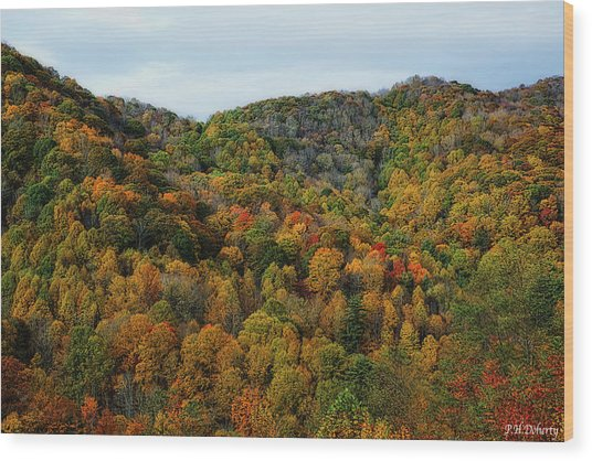 Autumn View Of The Bald Mountains  Wood Print